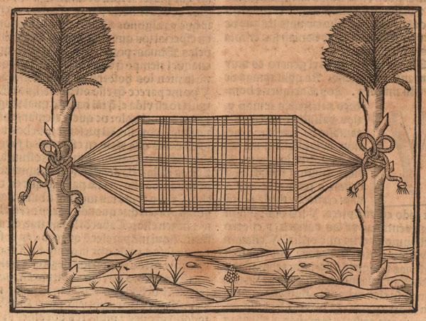 Oviedo hammock drawing